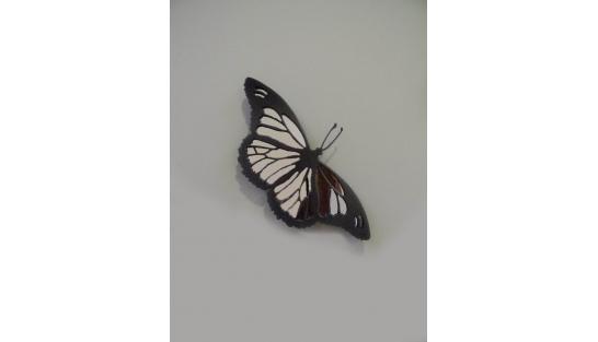 Бабочка (с зеркалом) купить