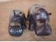 Мини-Носорог (Dinazor 3539) купить